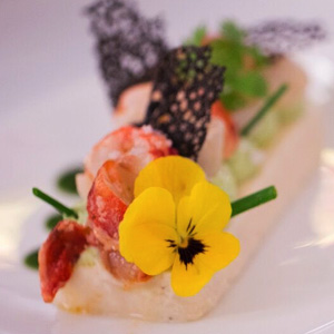 Cauliflower and Chive Mousse, Yuzu Marinated Lobster and Scallop